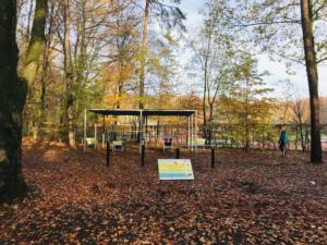 Outdoor Gym im Hamburger Stadtpark